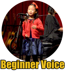 Beginner Voice
