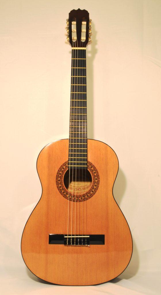 beginner acoustic guitar sunlite gcn 800 san marino music center. Black Bedroom Furniture Sets. Home Design Ideas
