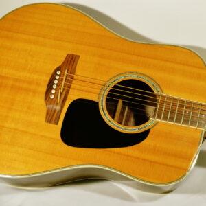 Acoustic/Steel String Guitars